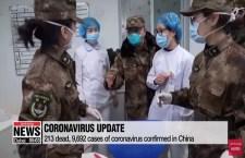 Prime amare lezioni dal coronavirus – di Enrico Seta