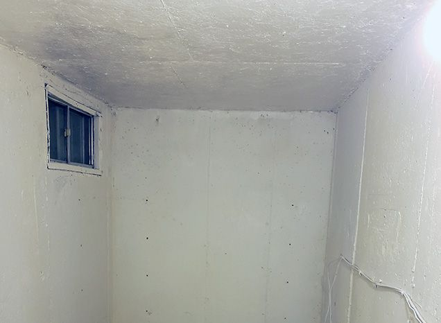 Cold Room Mold Removal