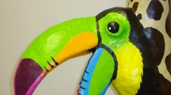 Tucan detail photo, from the side.