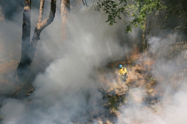 firefighter surrounded by smoke in a forest