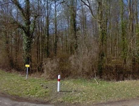 Aisne : La femme enceinte, retrouvée morte, a bien été tuée par des chiens – 20 Minutes