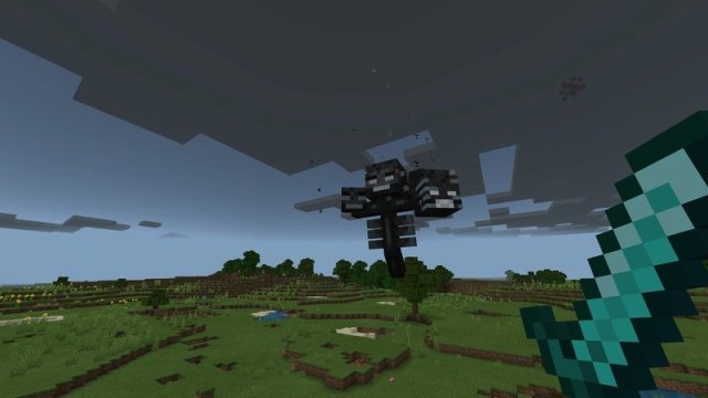 Fighting the Wither