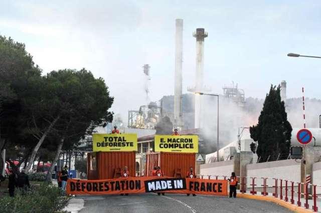 Des militants de Greenpeace bloquent une raffinerie Total pour dénoncer l'importation d'huile de palme, le 29 octobre à La Mède (Bouches-du-Rhône).