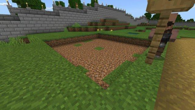 My designated sugar cane area