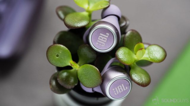 A picture of the JBL LIVE 300 TWS true wireless earbuds on top of a succulent.