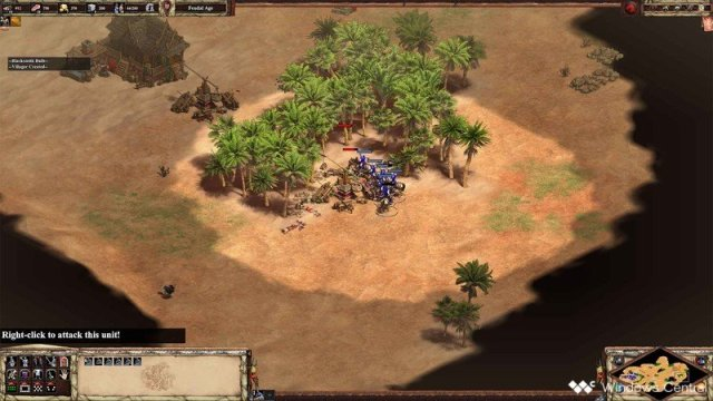 Age Of Empires II DE Scout Rush Raiding