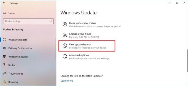 Windows 10 view update history option
