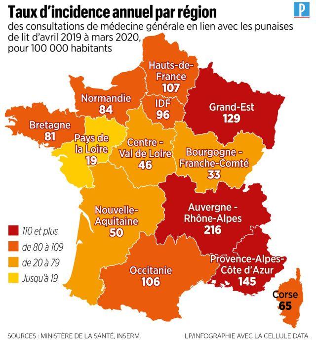 Punaises de lit : voici la carte des régions de France les plus touchées