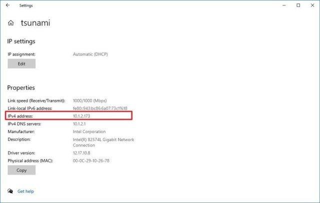 Windows 10 IPv4 address