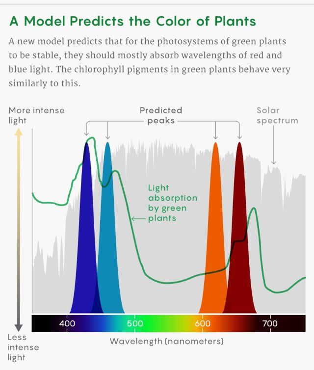 an infographic showing predictive model of color on plants