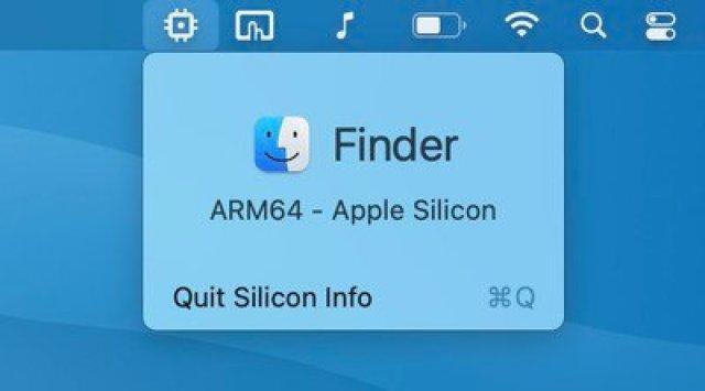 silicon info