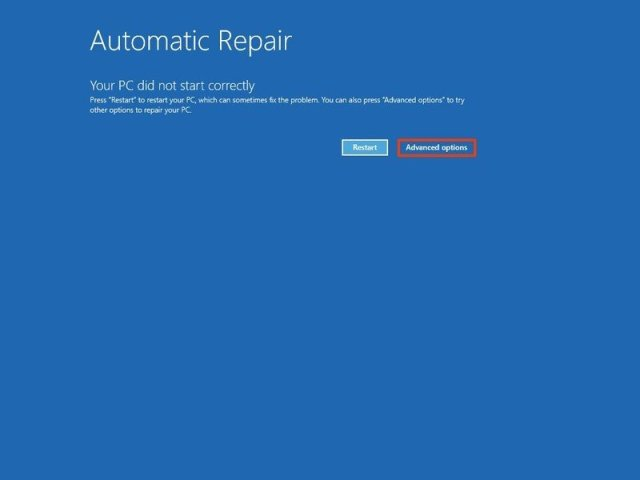 Automatic Repair Advanced Options