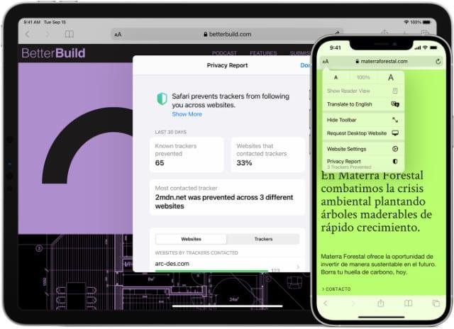 Safari browser on iPhone and iPad