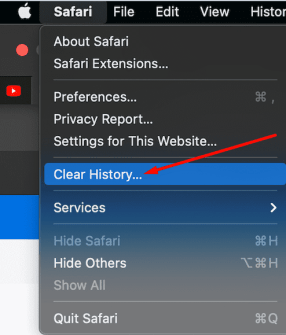 safari clear browsing history