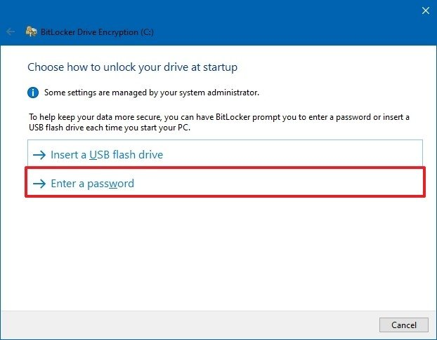 Bitlocker software password option