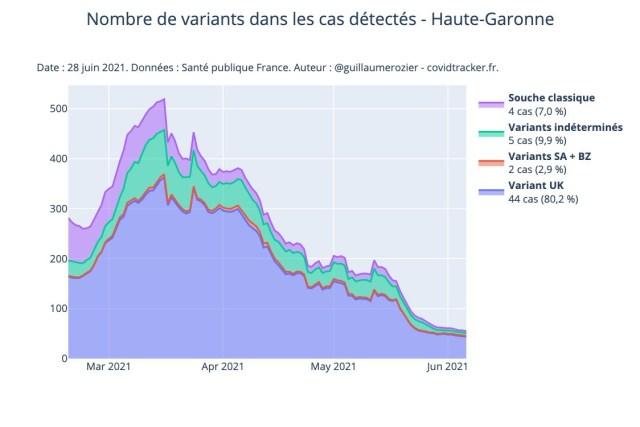En Haute-Garonne, la souche