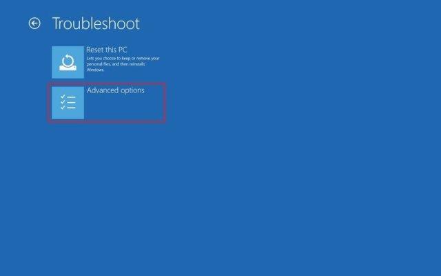 Windows 10 Advanced Options