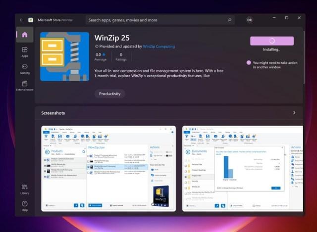 Winzip Windows11 Store