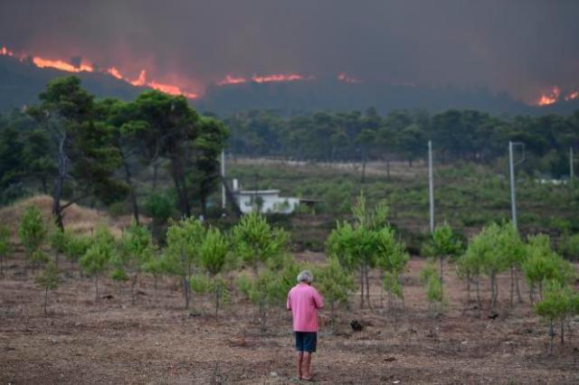 Le feu d'approche de Thrakomakedones, au nord d'Athènes, le 6août2021.