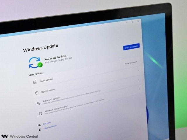 Windows 11 Update Checkforupdate Light