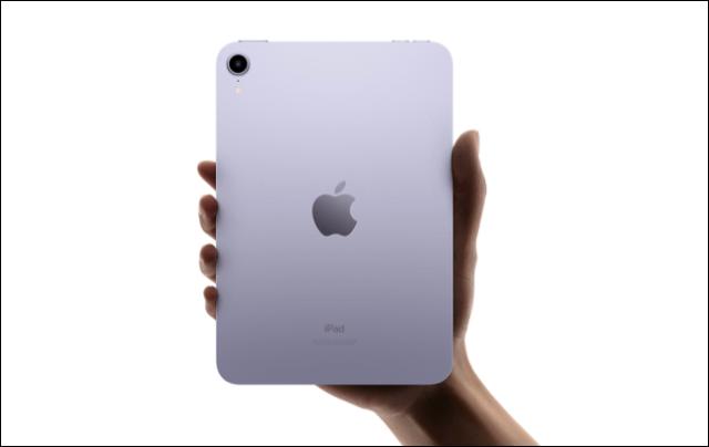 Caméra arrière iPad mini 2021