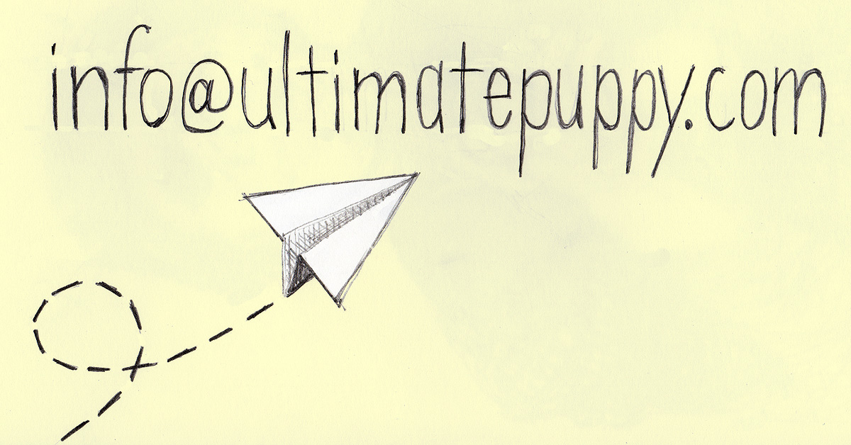 an image of info@ our URL plus a paper airplane sitting beside it