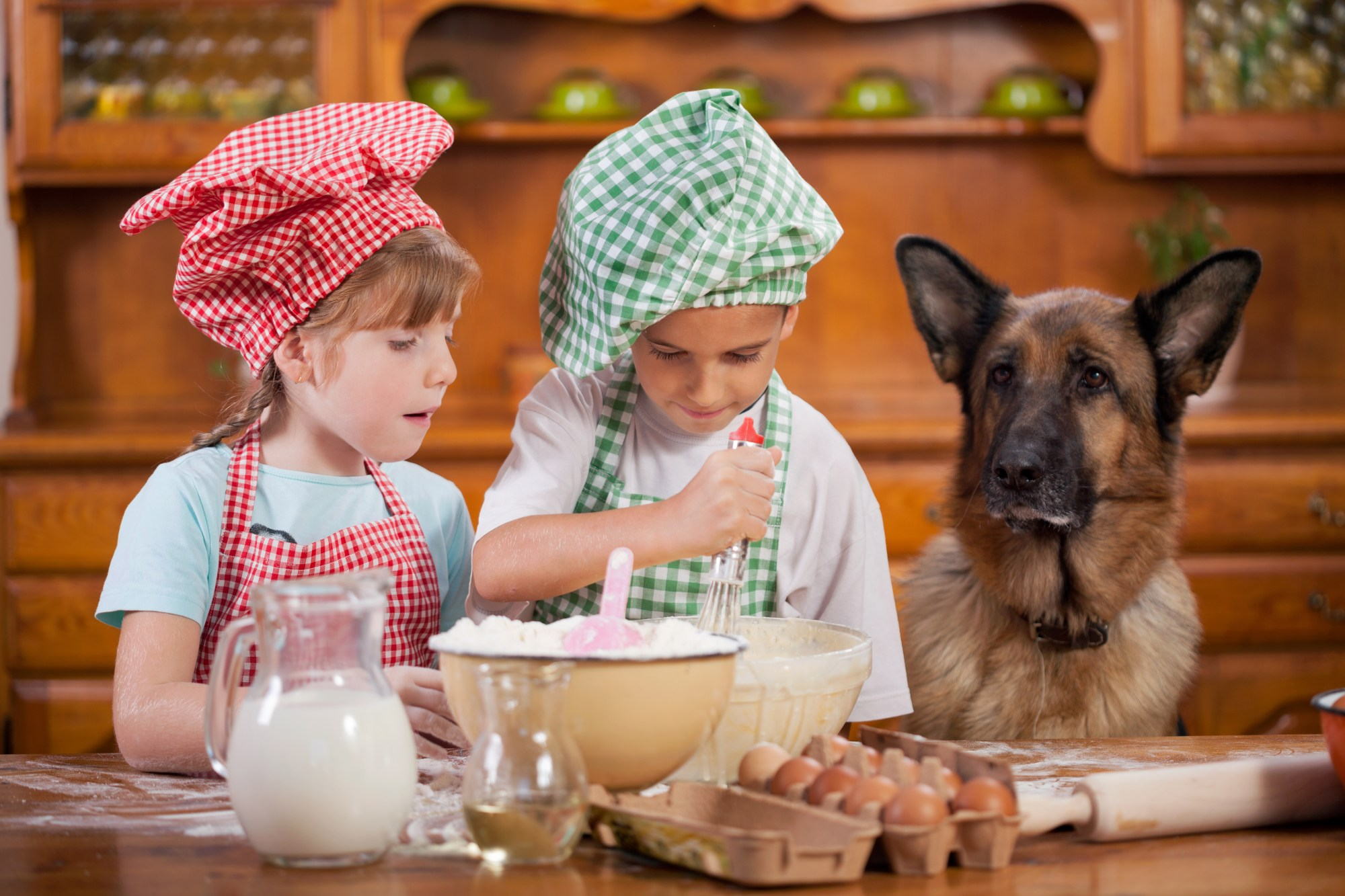 Two young girls, about 5 or 6 years old, are in the kitchen baking. Beside them, sitting quietly and watching on is an adult german shepherd.