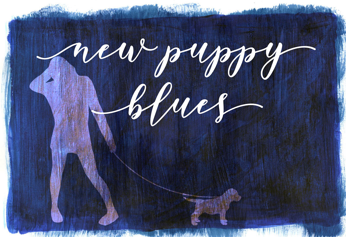 graphic illustration of New Puppy Blues. Lettering on midnight blue background. Silhouette of woman holding a leash with puppy at the end of it.