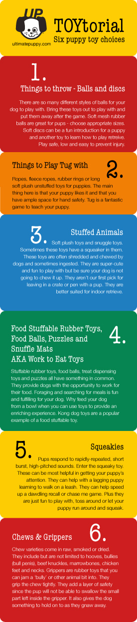 An ultimatepuppy.com graphic of 6 categories of puppy toys