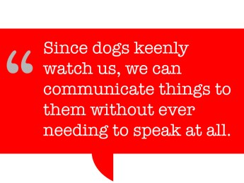 pull quote says: Since dogs keenly watch us, we can communicate things to them without ever needing to speak at all