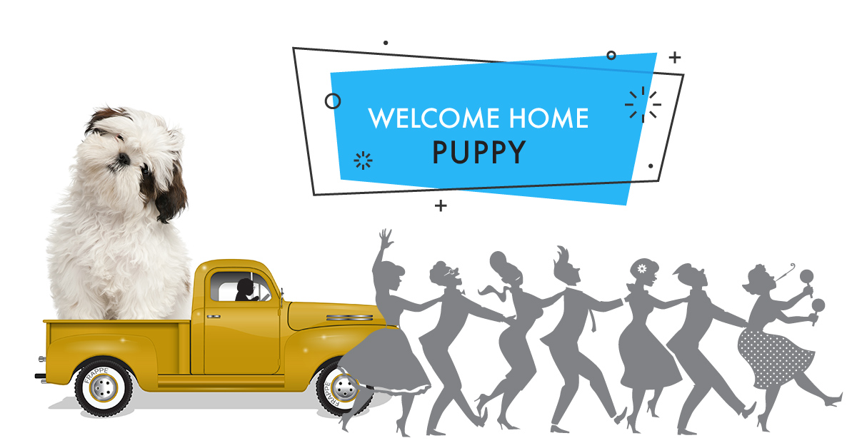 Gigantic sized puppy sitting on a flatbed vintage truck in a parade. With a banner that says Welcome Home Puppy.
