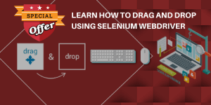 Selenium Webdriver Drag and drop