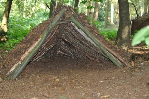How to Build a Survival Shelter with a Knife?