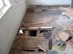 Termites in the Floor