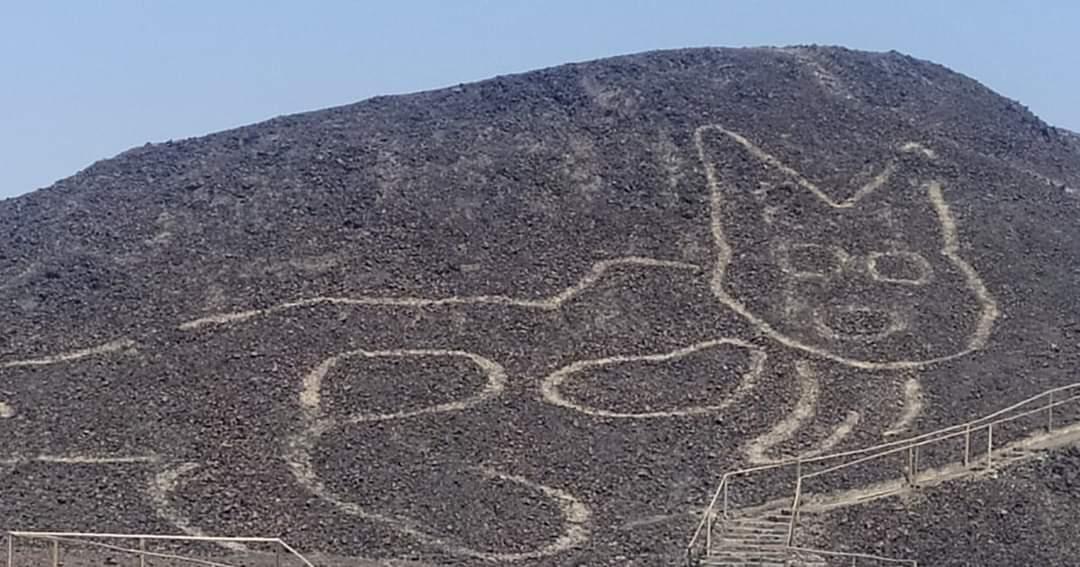 Nuova incisione Nazca, linee di Nazca