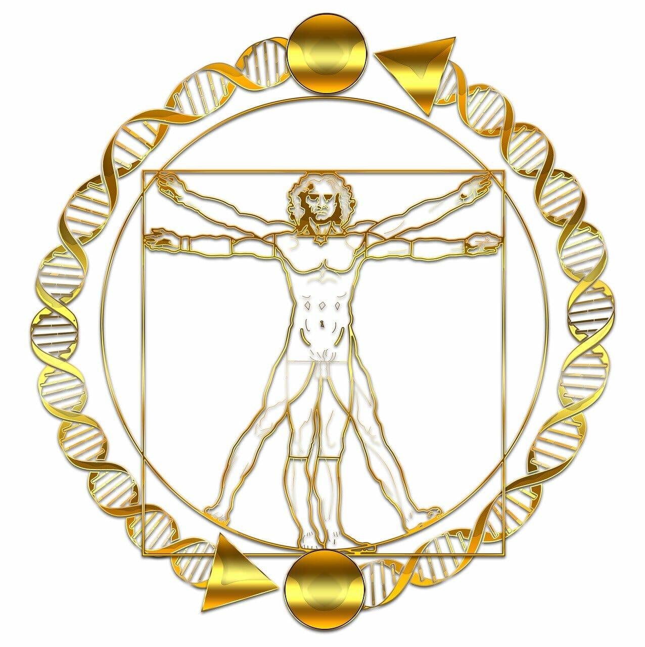 DNA di Leonardo da Vinci