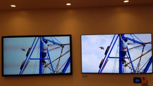 Bei wechselnder Raumbeleuchtung zeigt Samsung die Vorteile von QLED-TVs