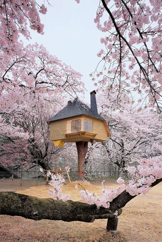 tree-house-18