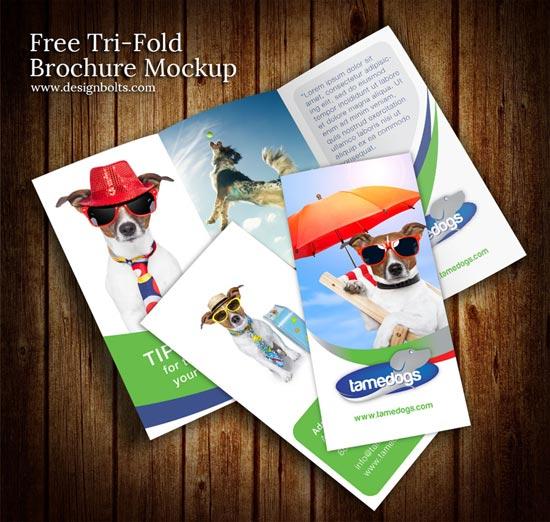 Free Tri Fold Brochure Mockup PSD Template