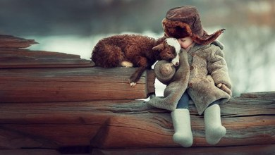 Photo of Sweet Photos Of Children And Animals / Birds Playing Together By Elena Karneeva