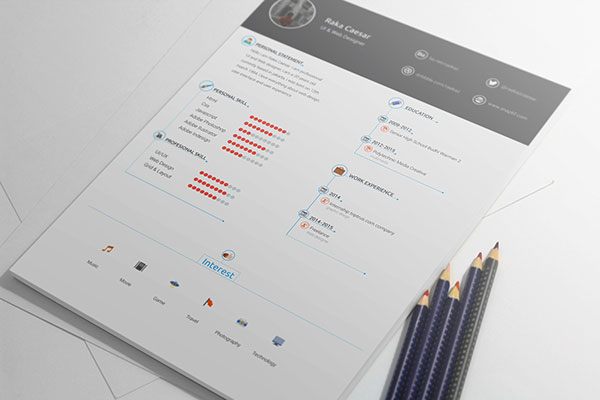 professional resume template download free