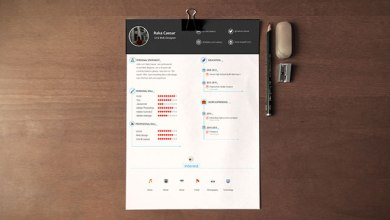 Photo of Simple & Professional Resume Template Free Download