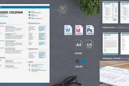 Best Professional Resume Templates Psd  word   AI Format Collection Best Professional Resume Templates Psd word AI Format Collection