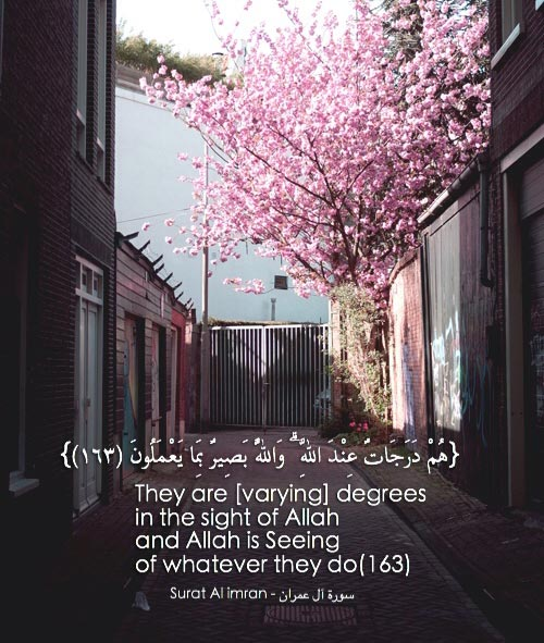 islamic quotes in english 1