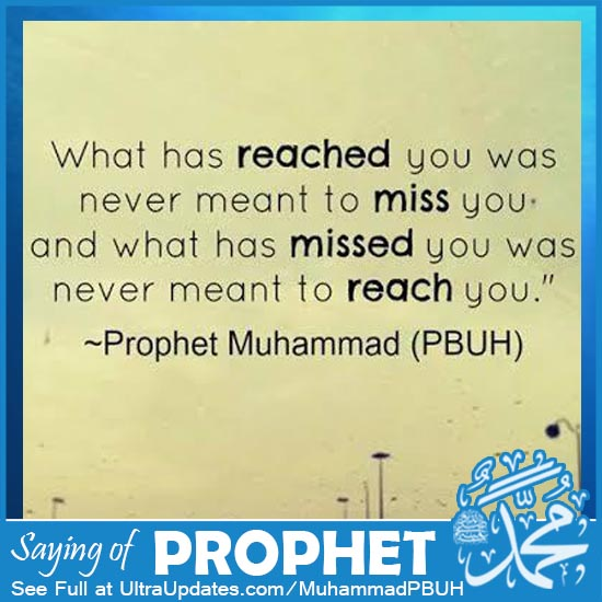 quotes by prophet muhammad