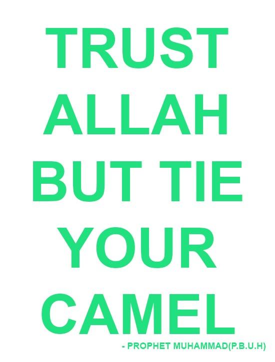 trust allah quotes