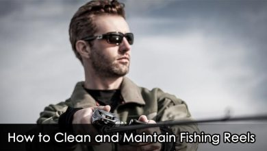 Photo of How to Clean and Maintain Fishing Reels