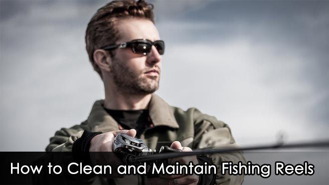 How-to-Clean-and-Maintain-Fishing-Reels