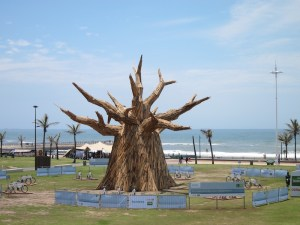 The COP17 Tree at the Durban Beachfront