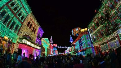 Datas confirmadas para o Osborne Family Spectacle of Dancing Lights | Um bilhete, por favor.